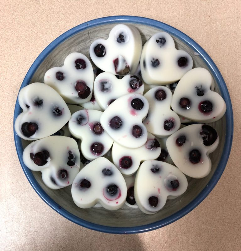 blueberry coconut milk dog treats