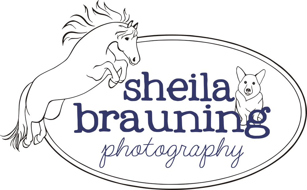Sheila Brauning Photography
