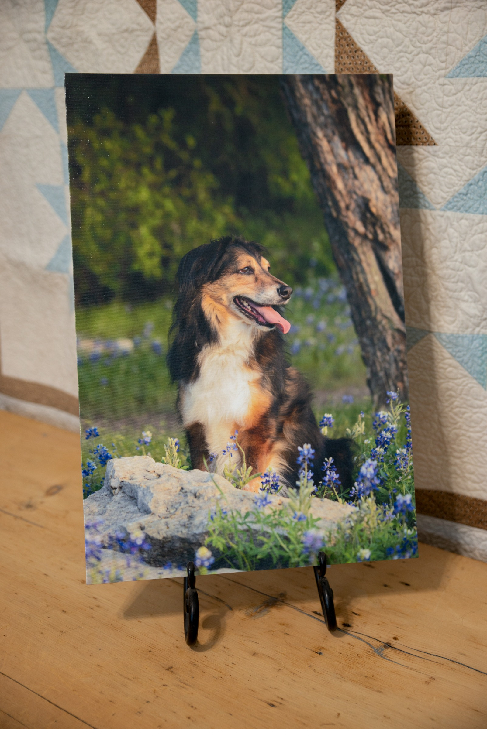 Gallery Wrapped Canvas from Sheila Brauning Photography